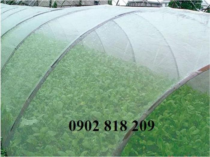 Lưới chắn côn trùng quây vườn rau sạch10