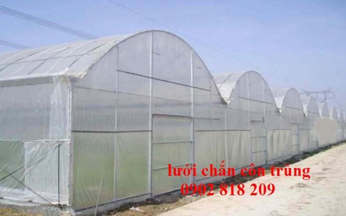 Lưới chắn côn trùng quây vườn rau sạch11