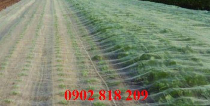 Lưới chắn côn trùng quây vườn rau sạch