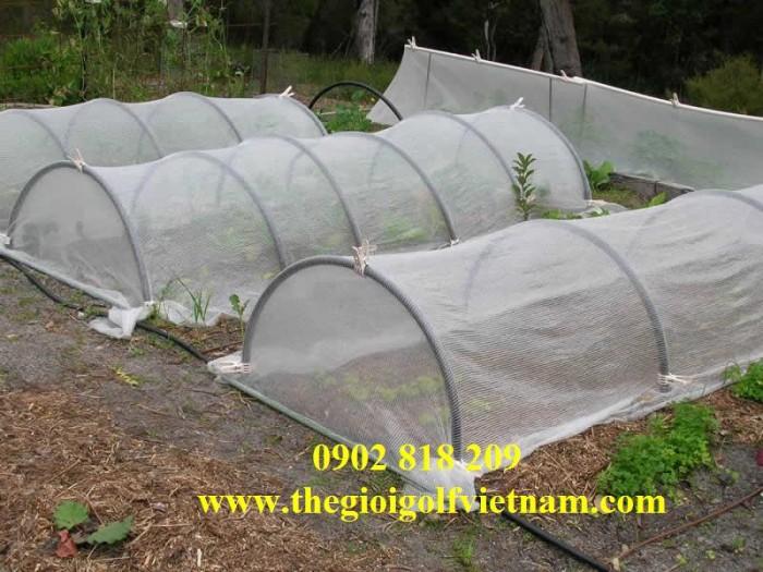 Lưới chắn côn trùng quây vườn rau sạch6