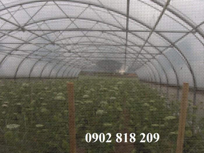 Lưới chắn côn trùng quây vườn rau sạch3