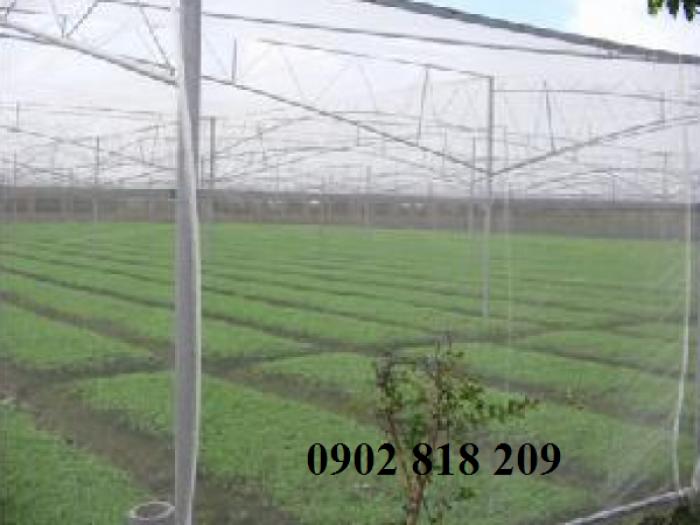 Lưới chắn côn trùng quây vườn rau sạch0