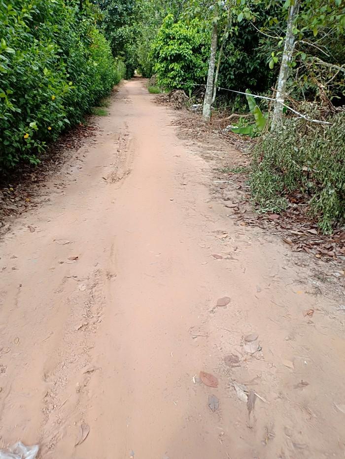 Đất vườn bờ bao Tân An đường 4m có thổ cư giá rẻ