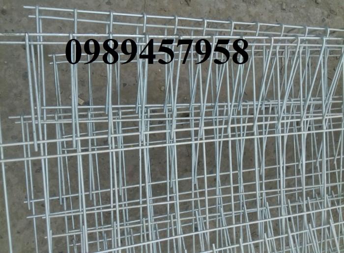 Lưới hàng rào mạ kẽm nhúng nóng phi 4, phi 5 50x200 giao hàng tận nơi1