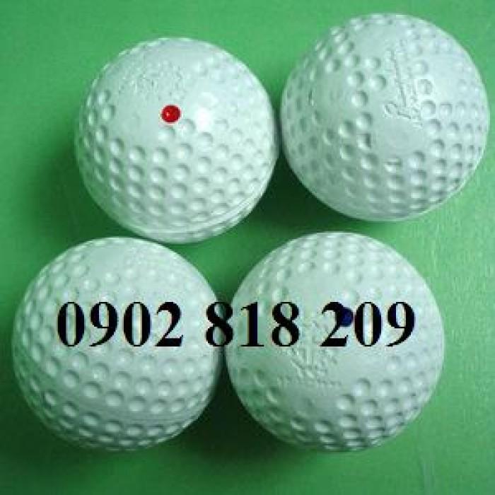 Bóng golf nổ khai trương giải đấu2
