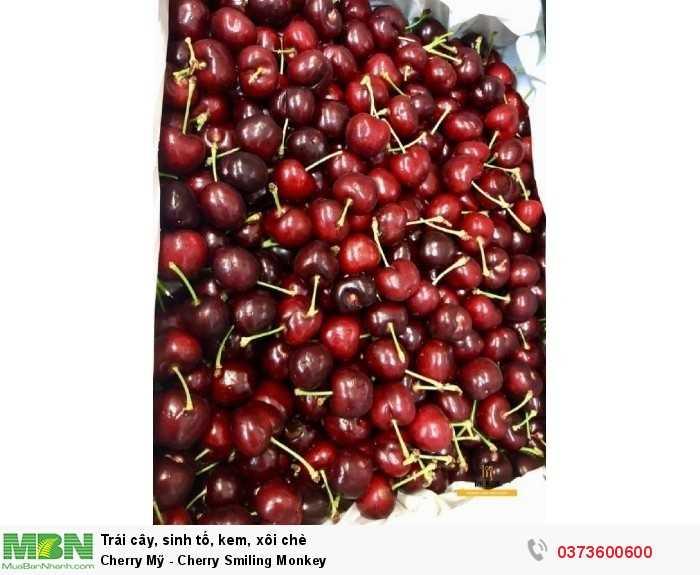 Cherry Smiling Monkey TPHCM0