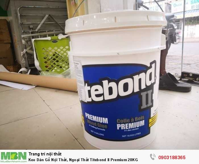 Titebond II Premium Wood Glue là nhãn hiệu hàng đầu duy nhất trong các loại keo một thành phần vượt qua tiêu chuẩn ANSI II quy định về khả năng kháng nước.  Sản phẩm rất thích hợp để dùng cho các đồ gỗ để ngoài trời như bàn ghế sân vườn, lồng chim, hộp thư, chậu cây kiểng và bàn ghế đi dã ngoại.0