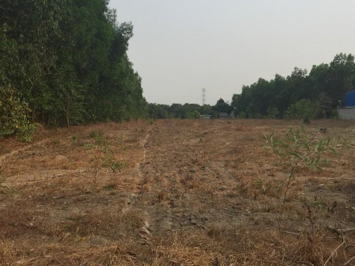 Tôi cần bán 7000m2 đất Long Phước làm nhà vườn, gần rau sạch Vineco.