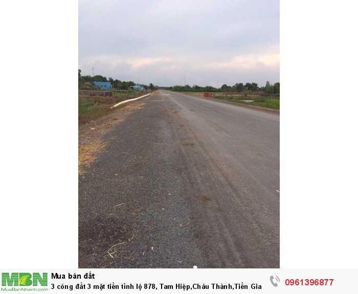 3 công đất 3 mặt tiền tỉnh lộ 878, Tam Hiệp,Châu Thành,Tiền Giang