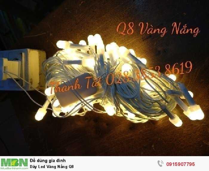 Dây Led Vàng Nắng Q81
