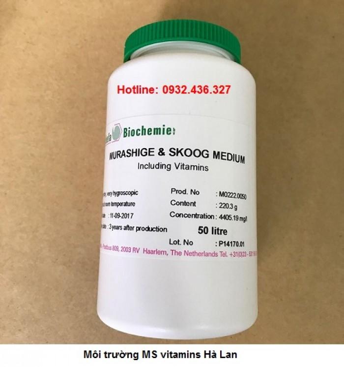 Ví dụ môi trường MS có ký hiệu MS0 không chứa sucrose và MS20 có chứa 20 g / l suc...