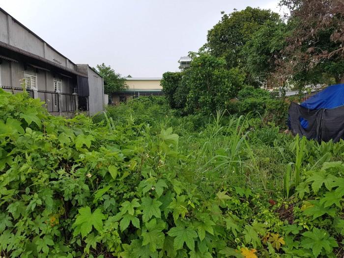 Bán 2 thửa đất Thổ Cư 99.9% liền kề vuông vức, Trung tâm Long Khánh, 2.62 tỷ