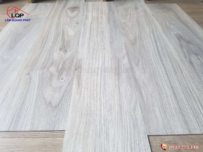 Sàn nhựa giả gỗ Glotex V2521