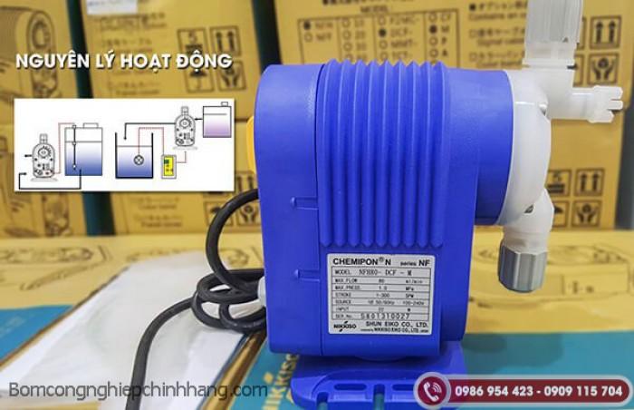 Cung cấp máy bơm định lượng phèn chất lượng2