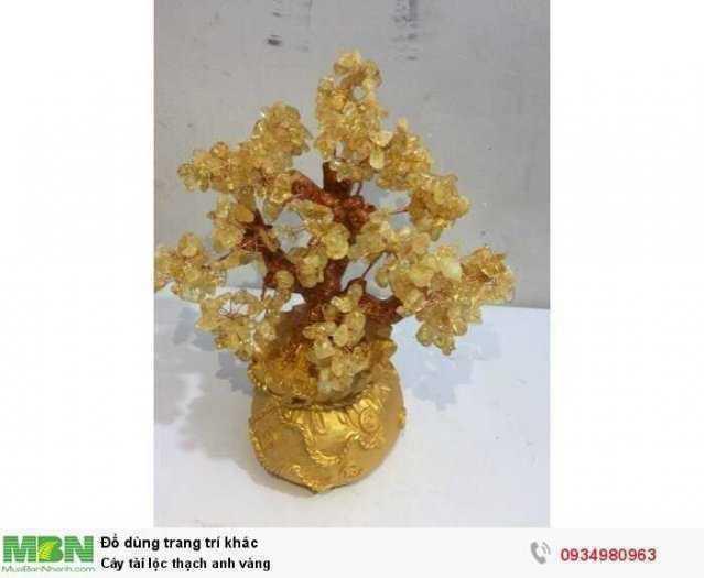 Cây tài lộc thạch anh vàng ( sỉ & lẻ ib )
