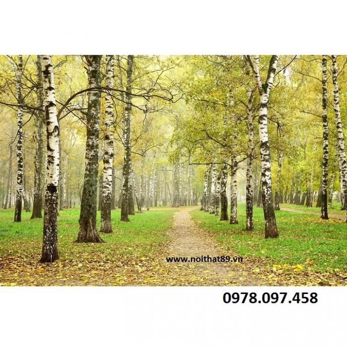 tranh vườn cây19