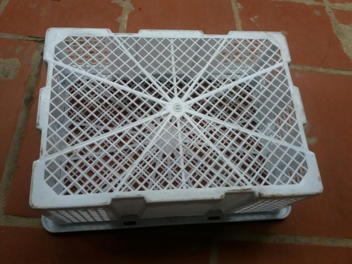 Rổ nhựa đựng nhãn xuất khẩu 12kg Phú Hòa An giá tốt cho bà con nông dân1