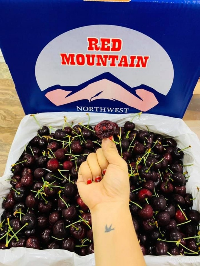 Cherry đỏ Red Moutain size 10.51