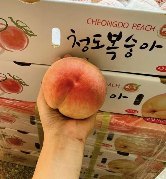 Đào Hàn Quốc2