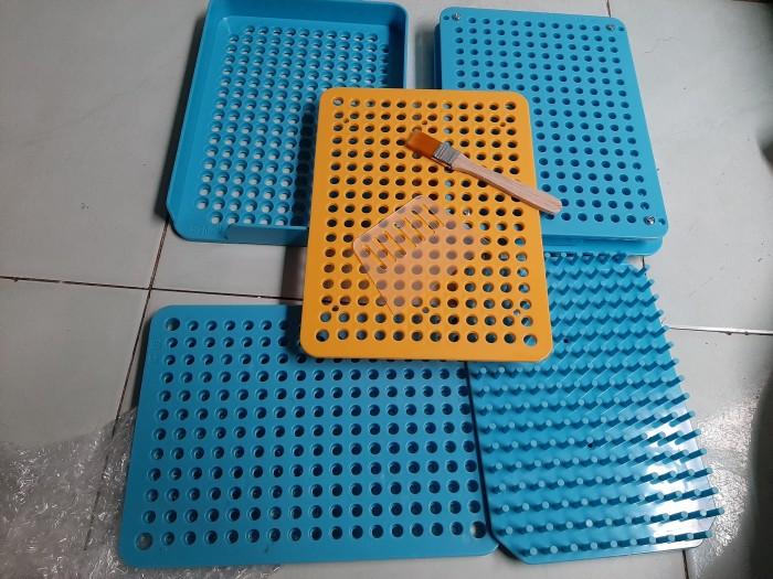 Khuôn đóng viên nhộng 200v vỏ nhựa, khay vô bột thuốc vào vỏ nhộng thủ công1