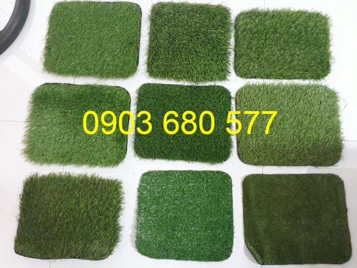 Chuyên cung cấp cỏ nhân tạo trang trí trường mầm non13