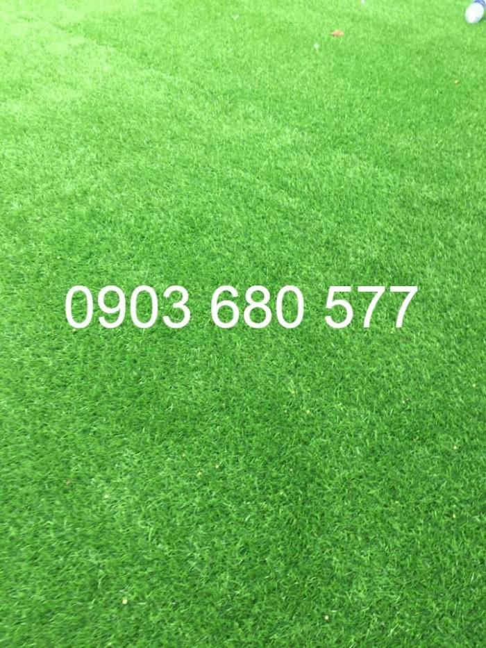 Chuyên cung cấp cỏ nhân tạo trang trí trường mầm non7