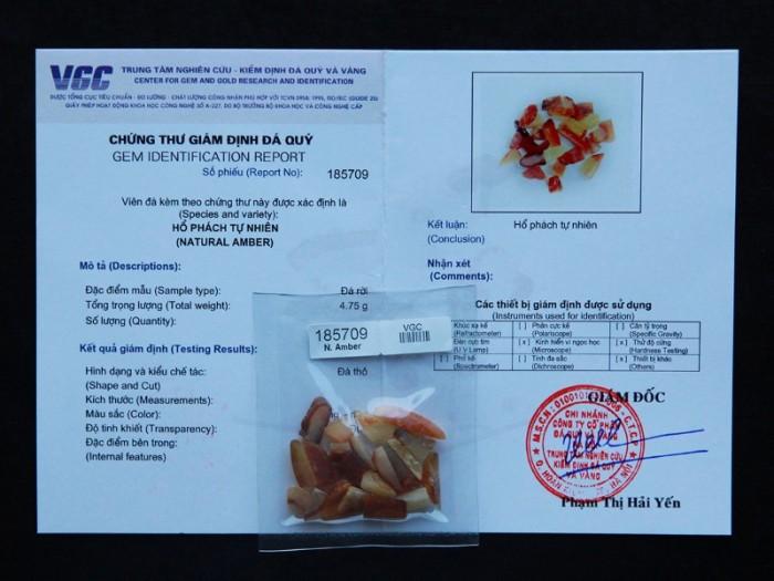 Hổ Phách tự nhiên đã được kiểm định chất lượng tại VGC5