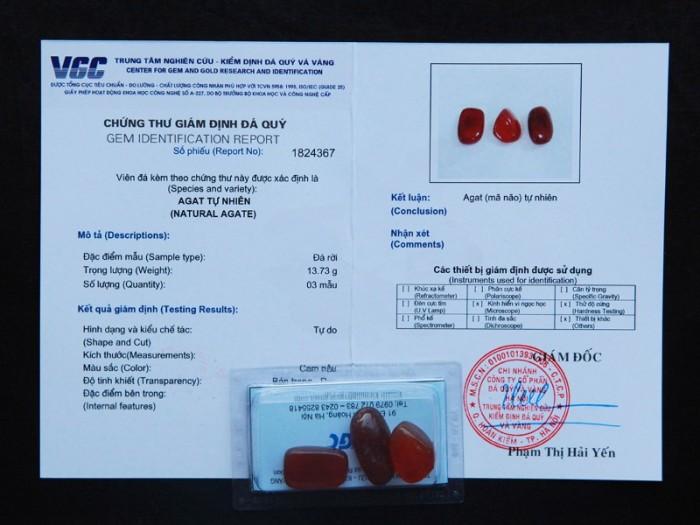 Mã não đỏ tự nhiên đã được kiểm định chất lượng tại VGC10