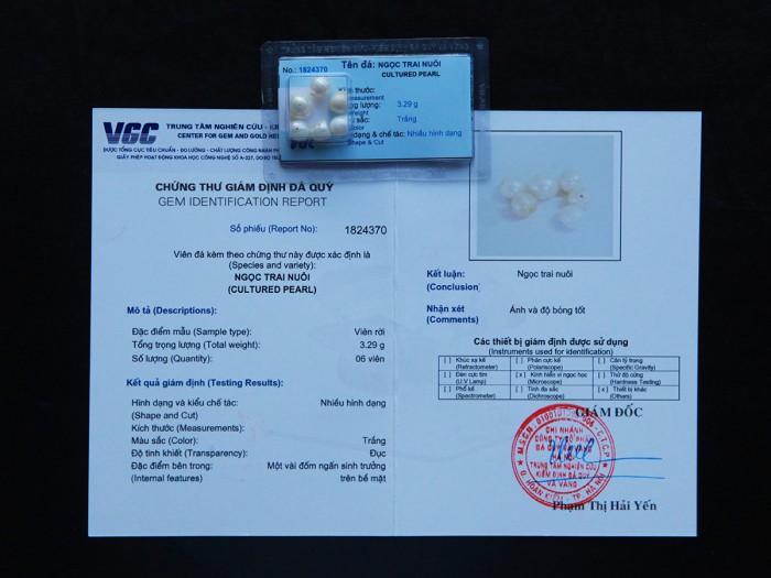 Ngọc trai tự nhiên đã được kiểm định chất lượng tại VGC5