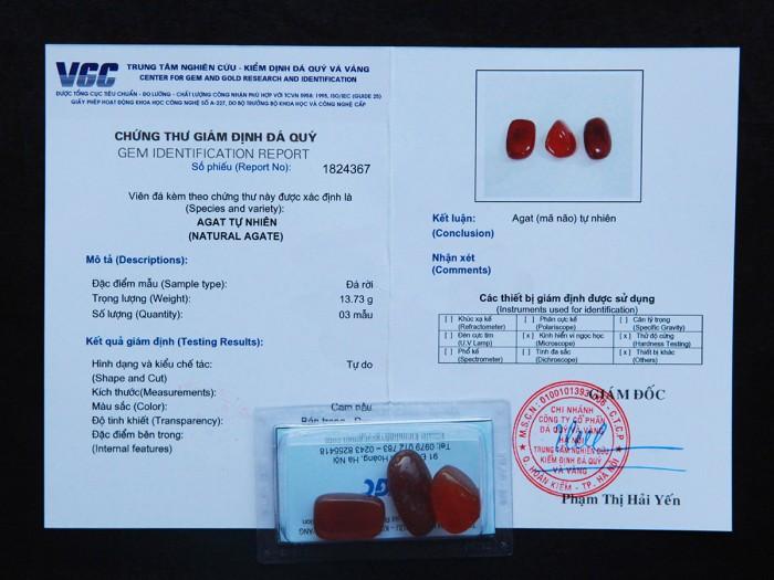 Mã não đỏ tự nhiên đã được kiểm định chất lượng tại VGC3
