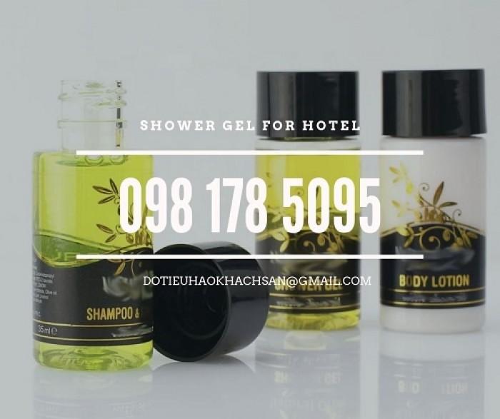 Bán dầu gội, sữa tắm chuyên dụng cho khu spa và massage chất lượng tốt, giá thành ổn định.7