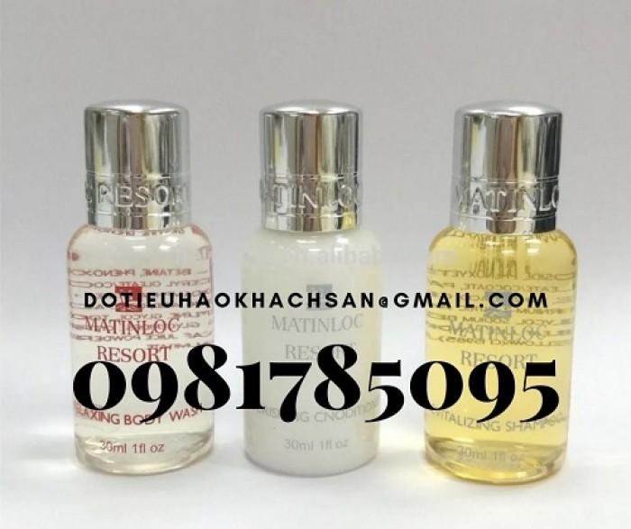 Bán dầu gội, sữa tắm chuyên dụng cho khu spa và massage chất lượng tốt, giá thành ổn định.3