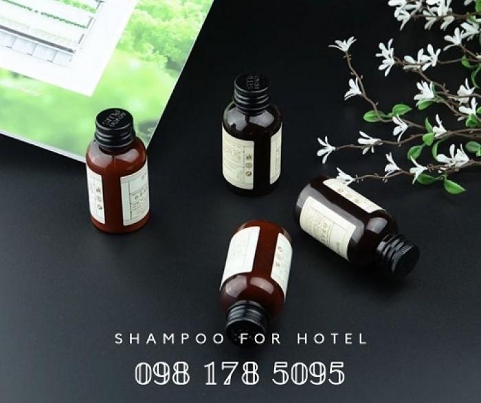 Bán dầu gội, sữa tắm chuyên dụng cho khu spa và massage chất lượng tốt, giá thành ổn định.8