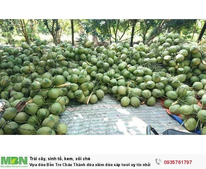 Vựa dừa Bến Tre Châu Thành dừa xiêm dừa sáp tươi uy tín nhất Sài Gòn1