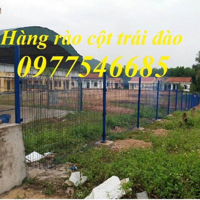 Lưới thép hàng rào2