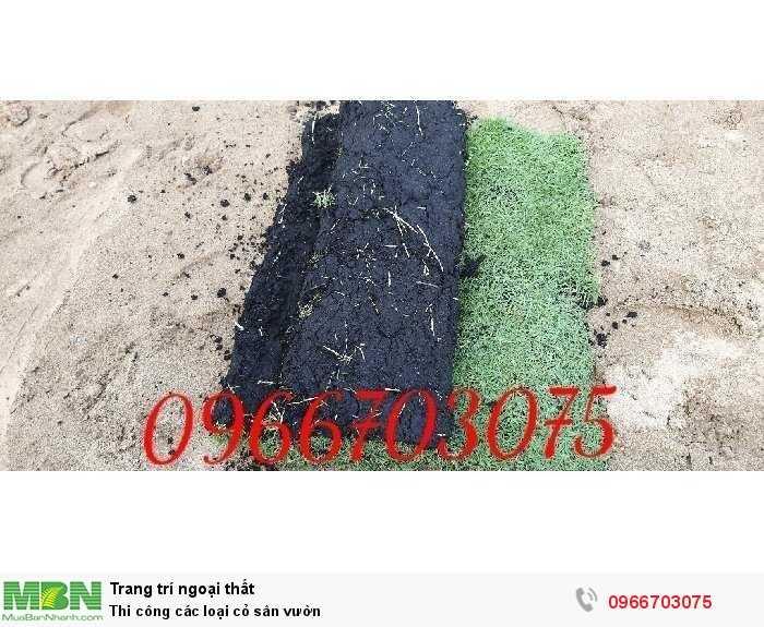 Thi công các loại cỏ sân vườn2