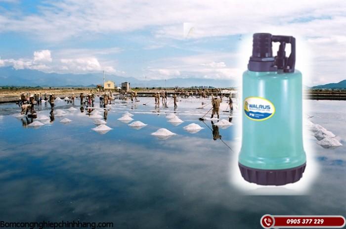 Các loại máy bơm nước biển nhập khẩu chất lượng cao2