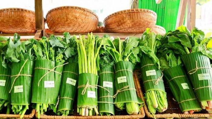 Bán lá chuối tươi, bán lá chuối sạch, cung cấp lá chuối, lá chuối sạch 0901 070 08011