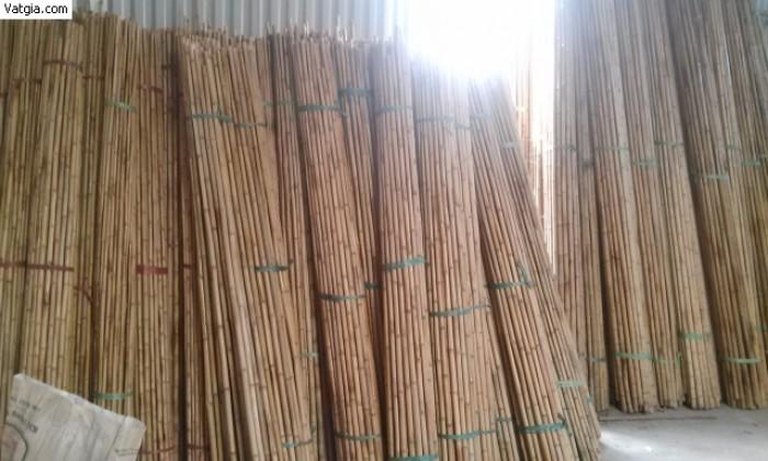 Bán cây trúc, bán cây tre, bán cây hóp, cung cấp tre trúc tại Hà Nội: 0901 070 080