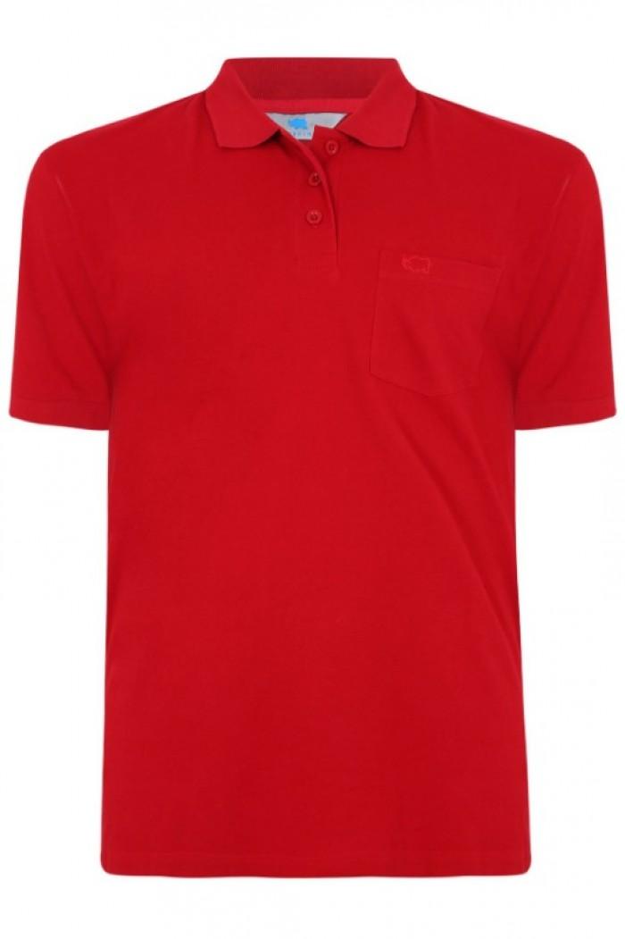 tìm xưởng sỉ áo thun cá sấu màu đỏ gấp  áo thun cá sấu màu đỏ tươi áo thun cá sấu màu đỏ cờ áo thun cá sấu màu đỏ đô in ấn áo thun theo yêu cầu