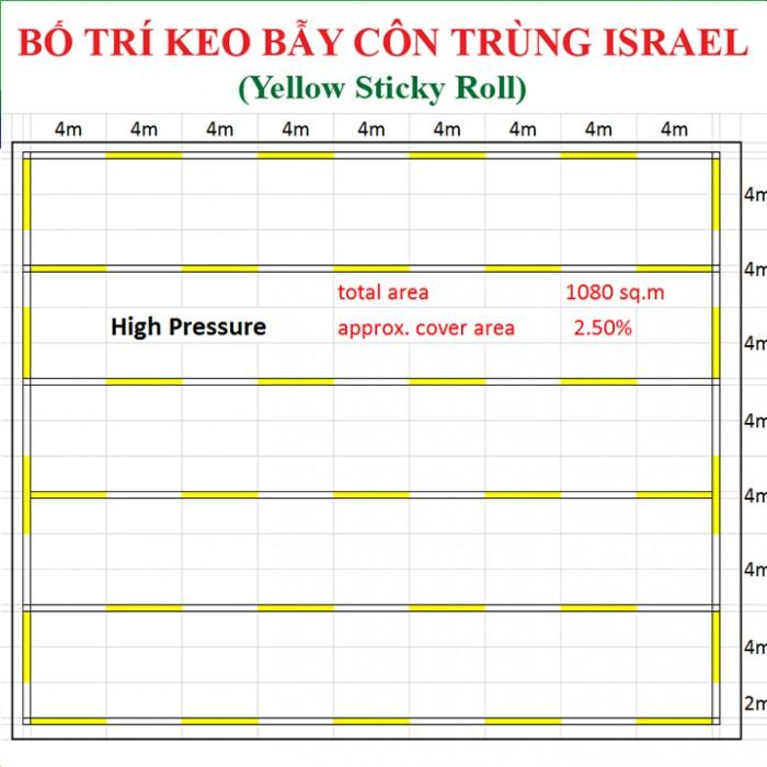 Keo bẫy côn trùng nông nghiệp Israel, combo 20 mét, màu vàng 2 mặt11