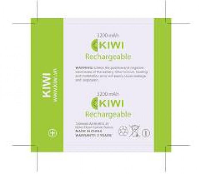 BỘ pin sạc Bte, Kiwi4