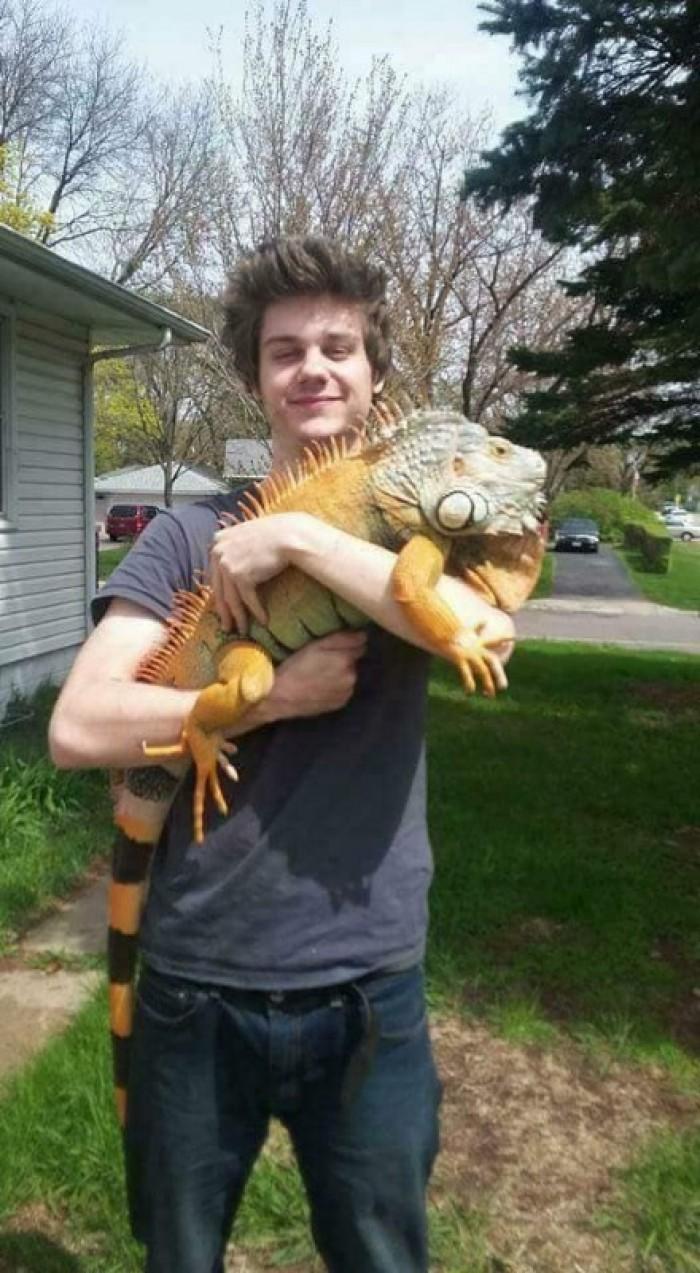 Bán thú cưng rồng Nam Mỹ Iguana3