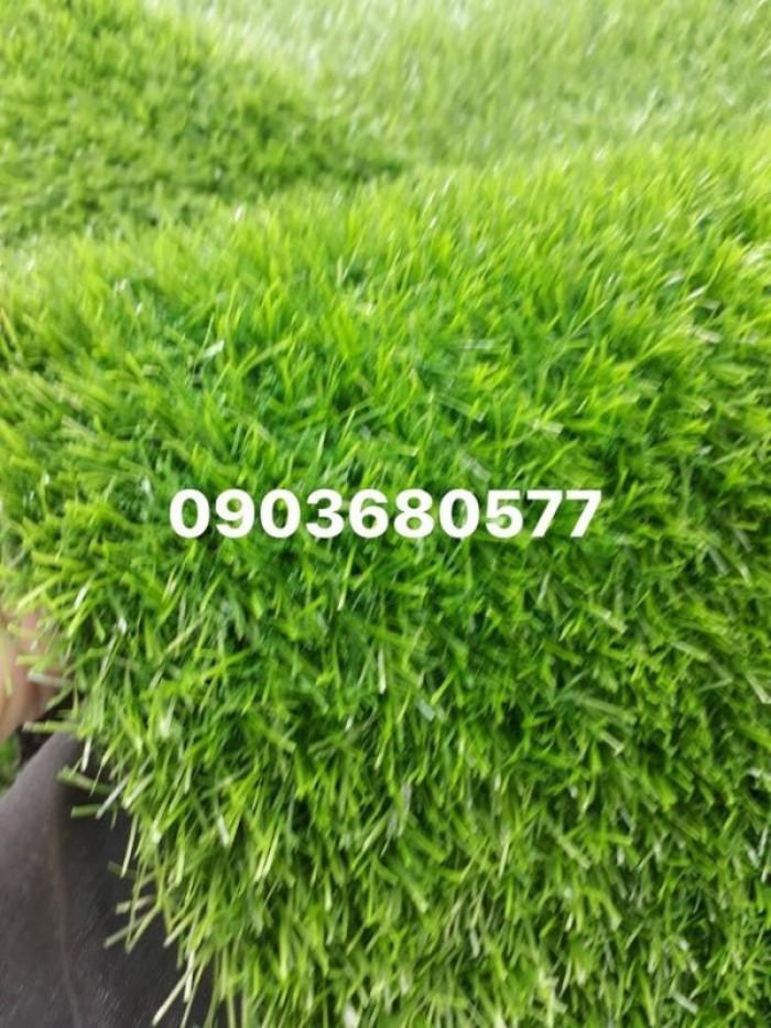 Chuyên cung cấp cỏ nhân tạo cho trường mầm non, công viên, sân chơi17