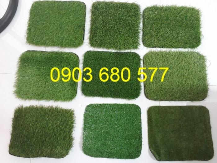 Chuyên cung cấp cỏ nhân tạo cho trường mầm non, công viên, sân chơi9
