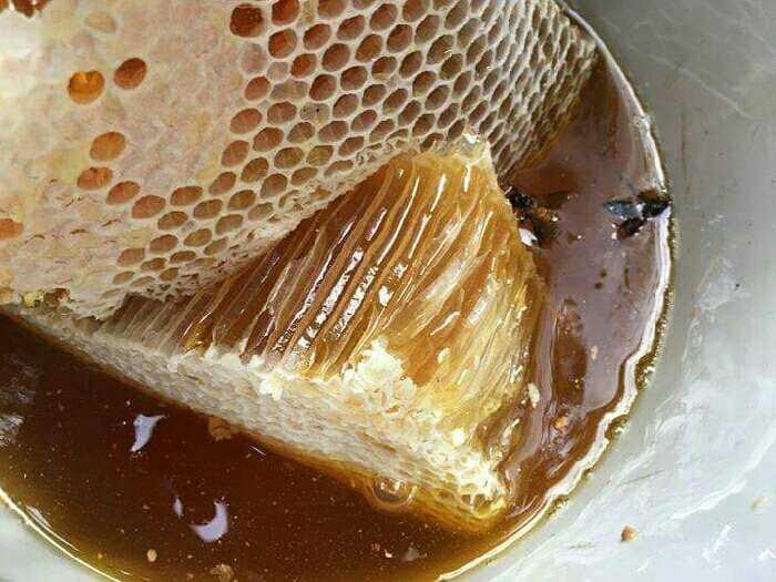 Mật ong nguyên chất U Minh Cà Mau0