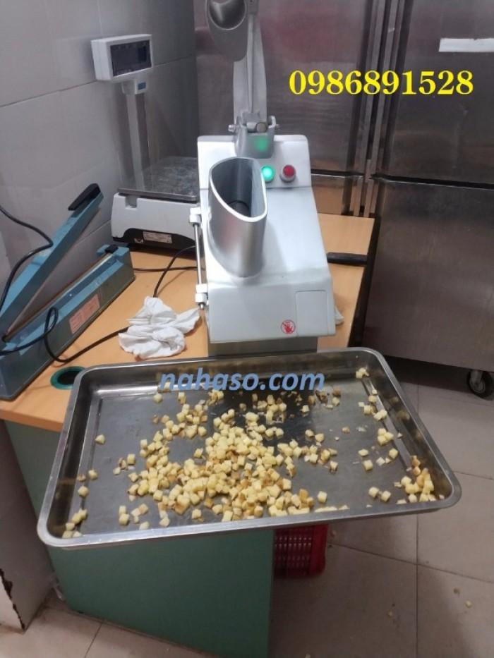 Máy thái rau củ quả đa năng VC60MS1