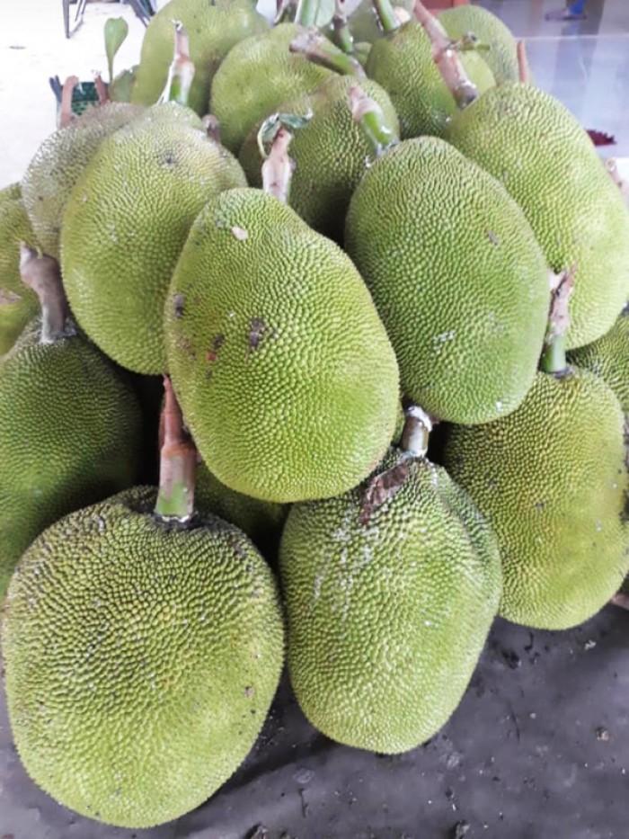 Gói 500gr Mít sấy giòn tự nhiên thơm ngon - Food By Mama2