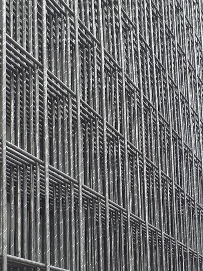 Lưới thép hàn D8 a 200x2008