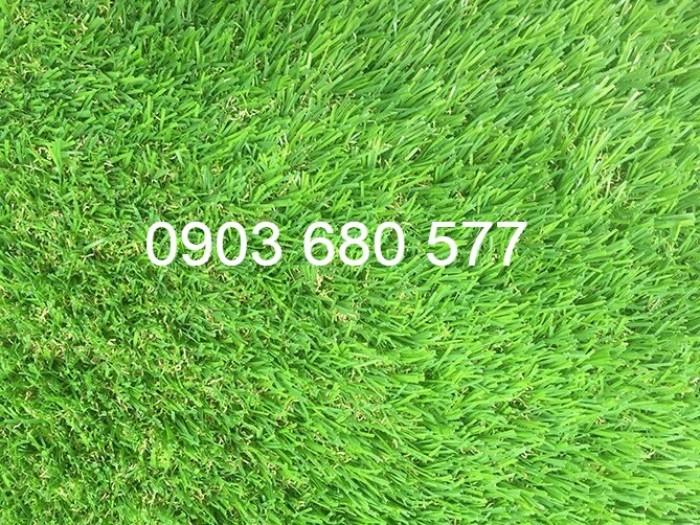 Chuyên bán cỏ nhân tạo cho trang trí trường mầm non, sân chơi, sân bóng, sân golf4